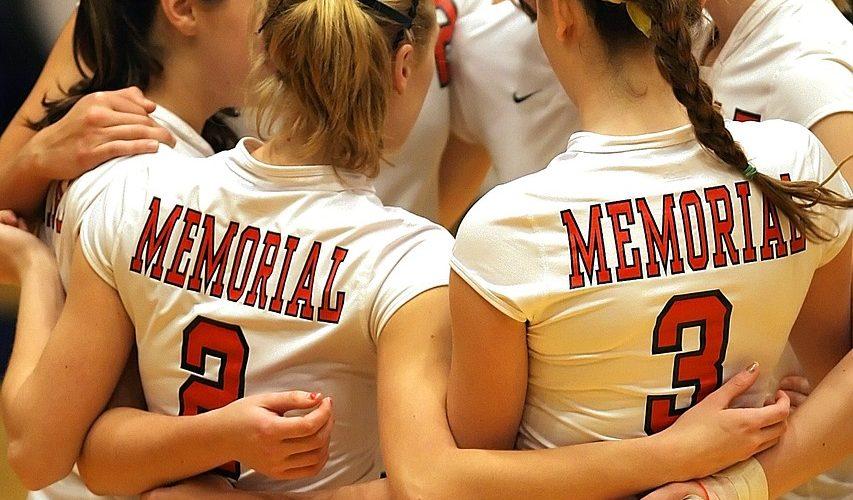 volleyball-team-1520918_1280 - copie